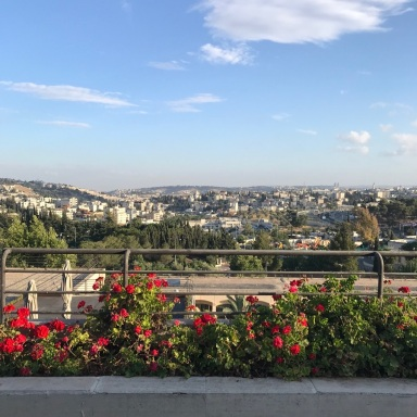 View of Jerusalem from the Dan Hotel.